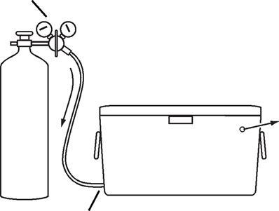 Homemade CO2 chamber